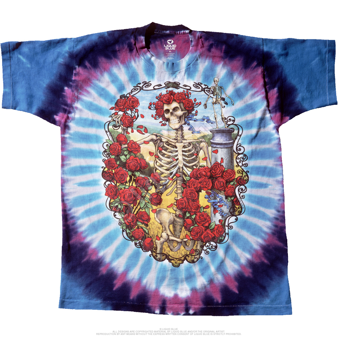 fa241dfc299 Grateful Dead Bertha 30th Anniversary Tie Dye T Shirt – Have to Have ...